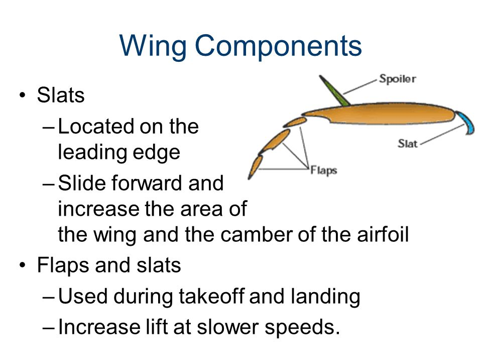 Wing Components Slats Located on the leading edge