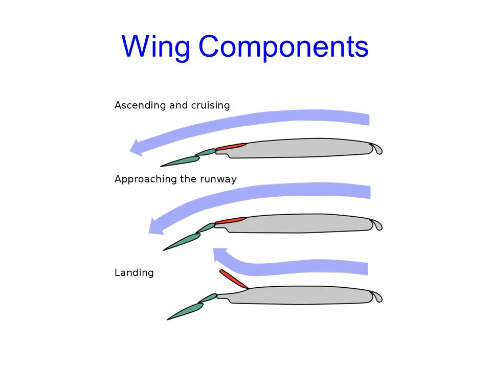 Wing Components Parts of an Aircraft Gateway To Technology®