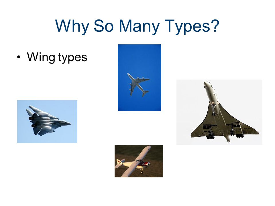 Why So Many Types Wing types Parts of an Aircraft