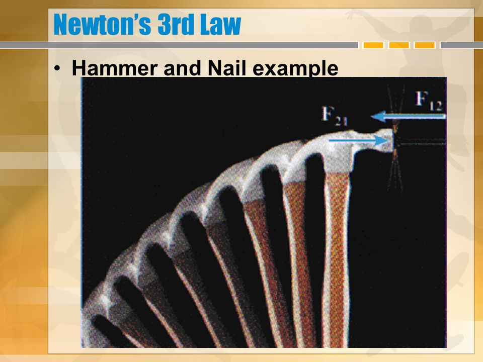 Newton's 3rd Law Hammer and Nail example