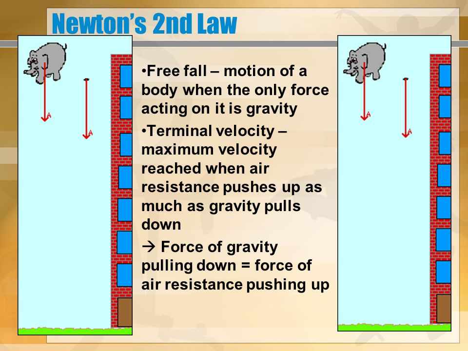 Newton's 2nd Law Free fall – motion of a body when the only force acting on it is gravity.