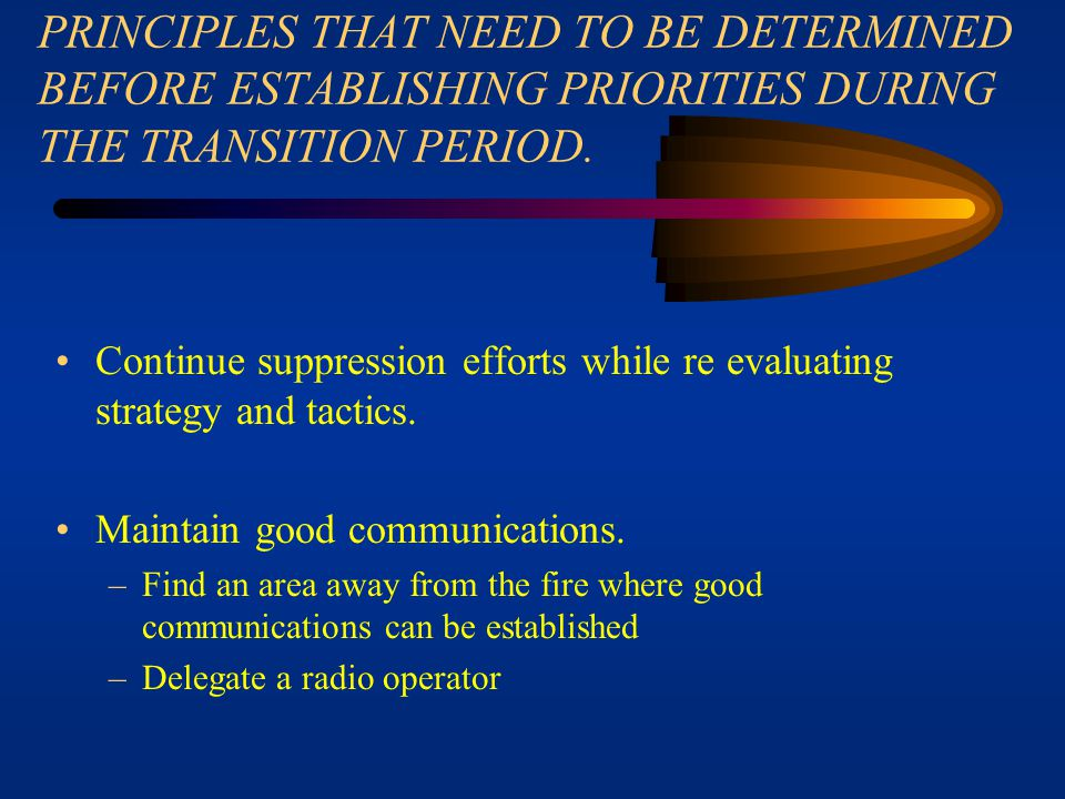PRINCIPLES THAT NEED TO BE DETERMINED BEFORE ESTABLISHING PRIORITIES DURING THE TRANSITION PERIOD.