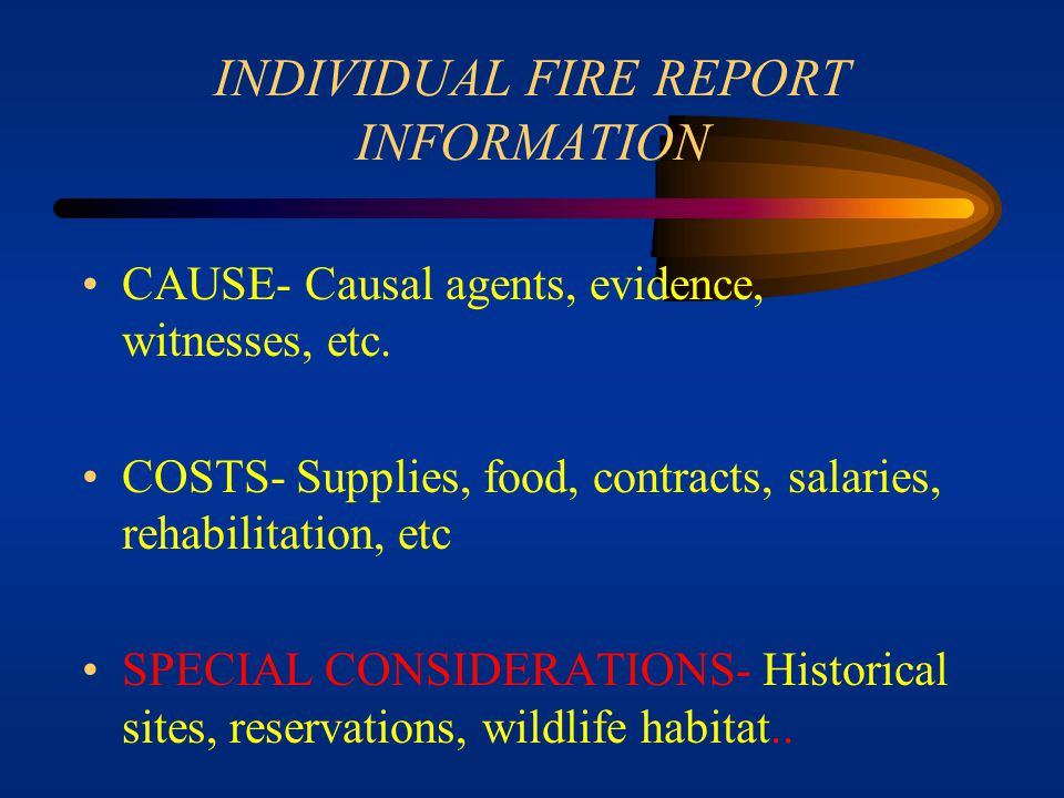 INDIVIDUAL FIRE REPORT INFORMATION