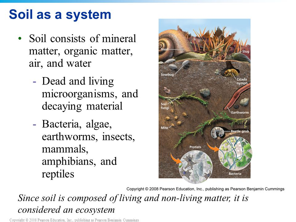 Soil as a system Soil consists of mineral matter, organic matter, air, and water. Dead and living microorganisms, and decaying material.