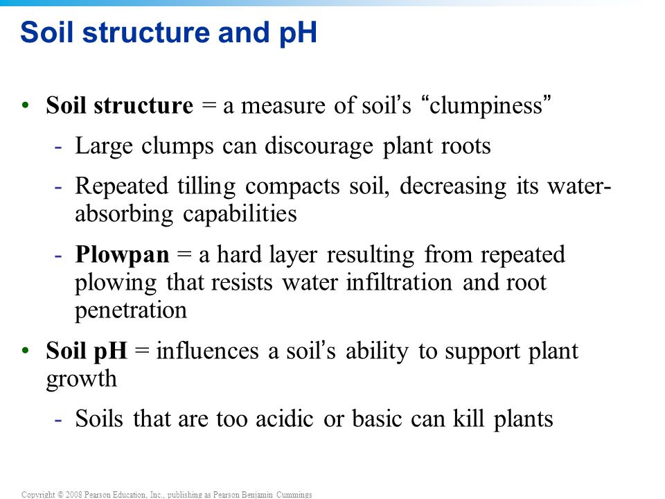 Soil structure and pH Soil structure = a measure of soil's clumpiness Large clumps can discourage plant roots.