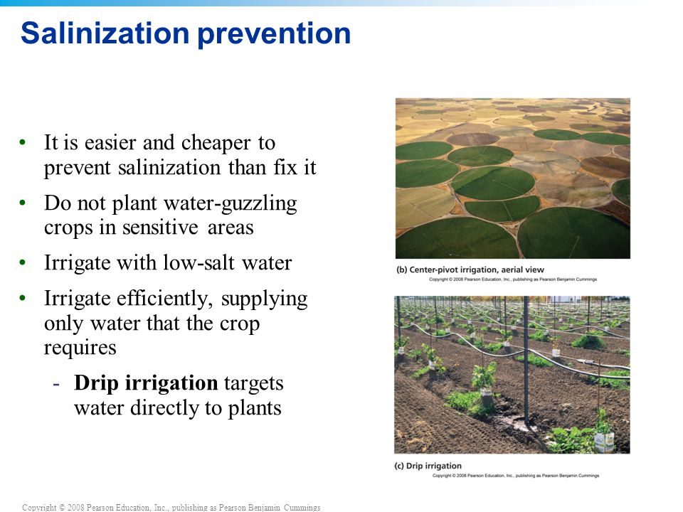 Salinization prevention