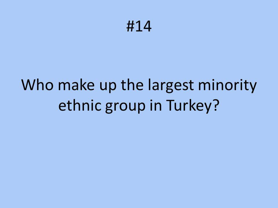 Who make up the largest minority ethnic group in Turkey