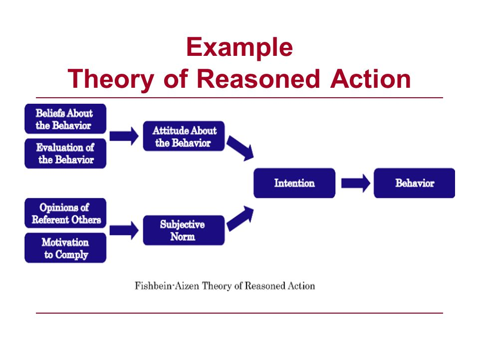 Example Theory of Reasoned Action