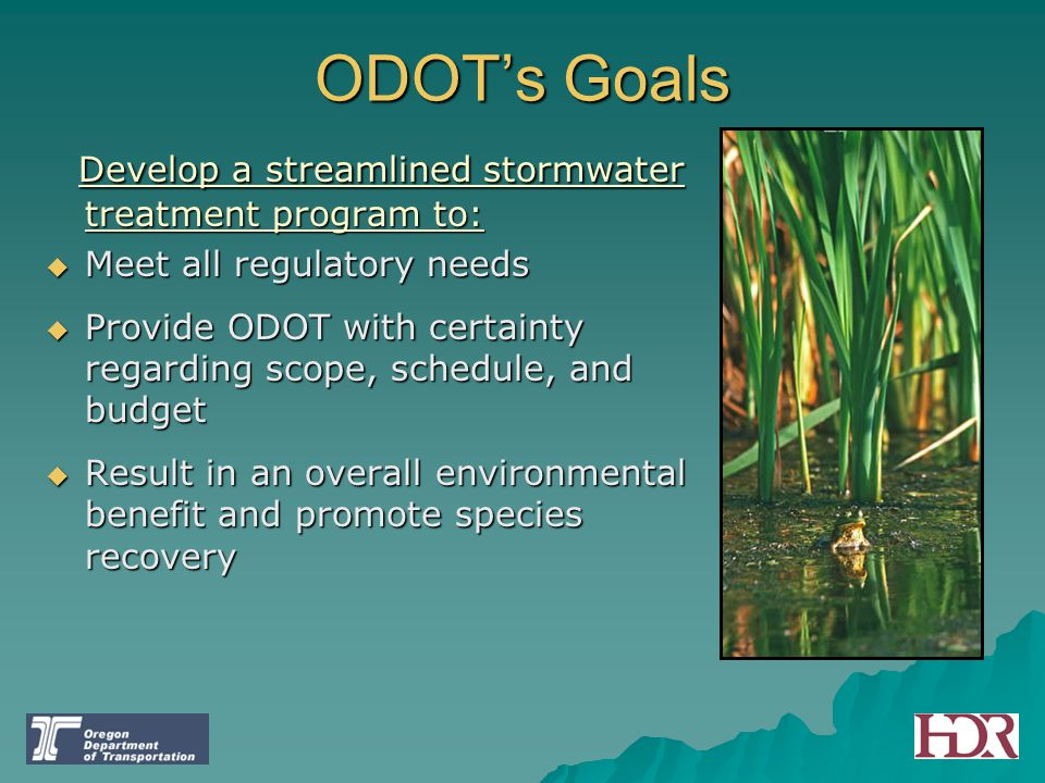 ODOT's Goals Develop a streamlined stormwater treatment program to: