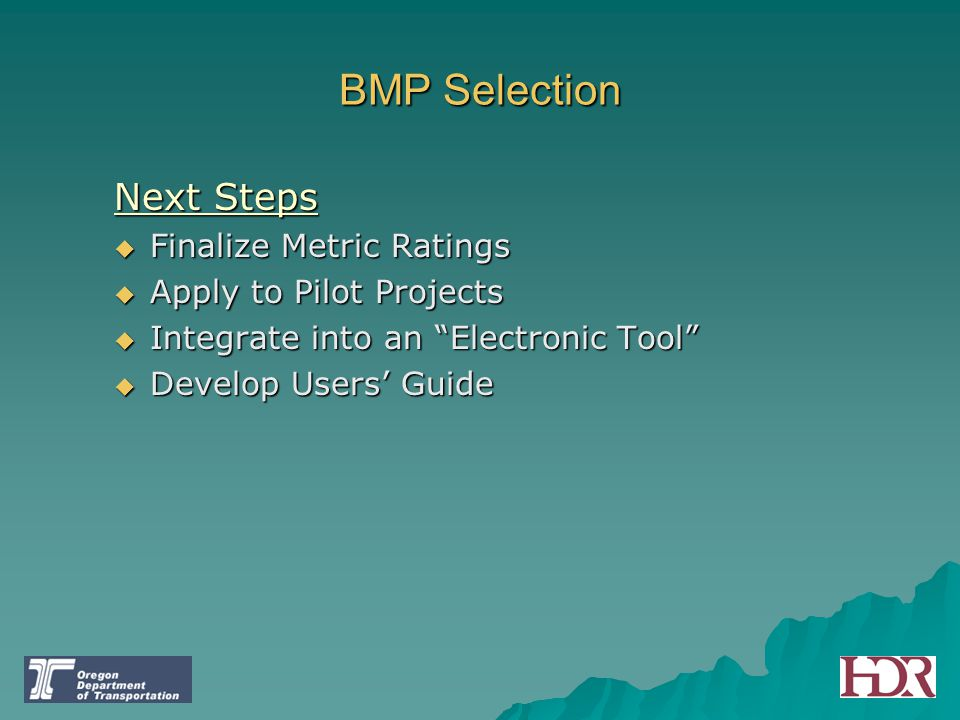 BMP Selection Next Steps Finalize Metric Ratings