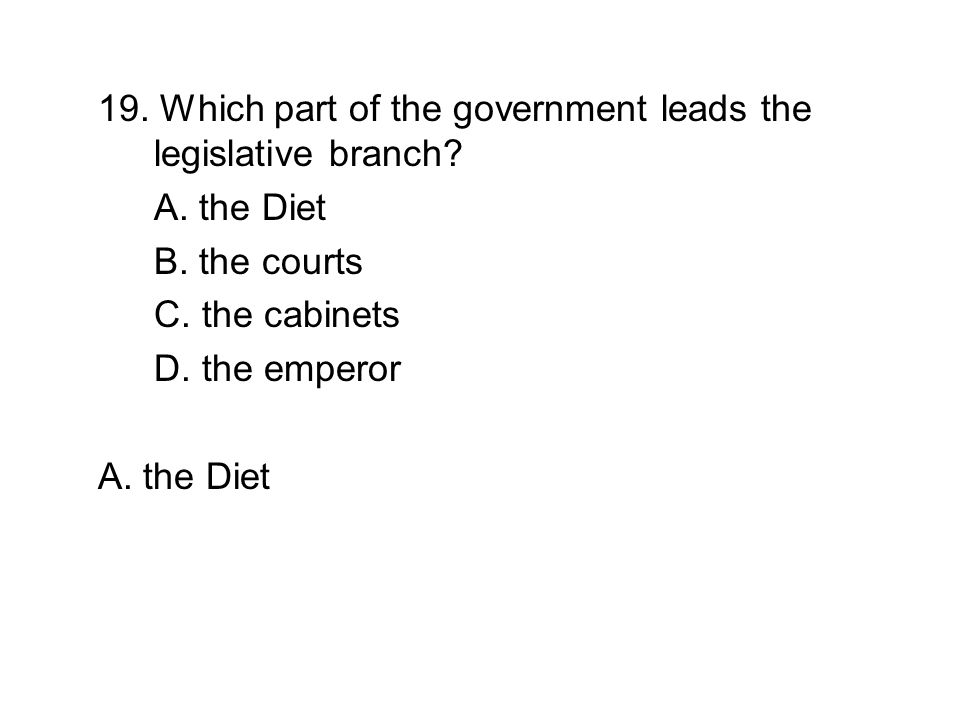 19. Which part of the government leads the legislative branch