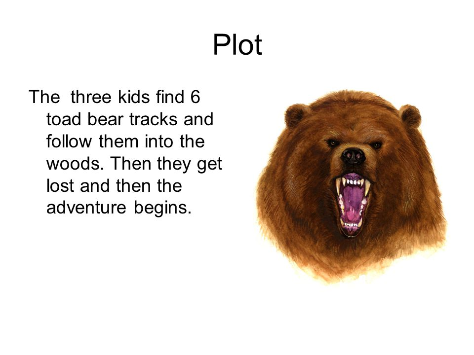Plot The three kids find 6 toad bear tracks and follow them into the woods.