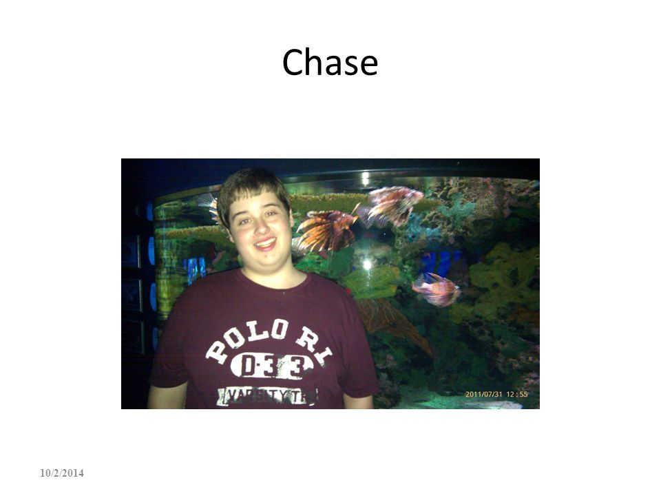 Chase 4/6/2017