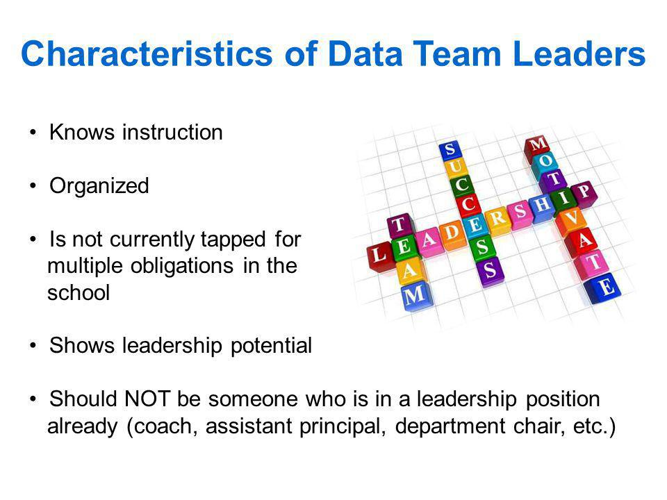 Characteristics of Data Team Leaders