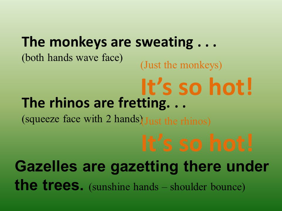 It's so hot! It's so hot! The monkeys are sweating . . .
