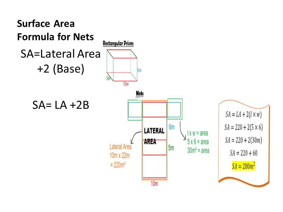 Surface Area Formula for Nets