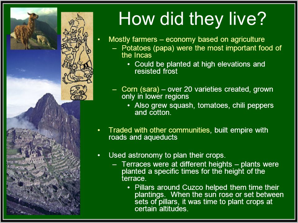 How did they live Mostly farmers – economy based on agriculture