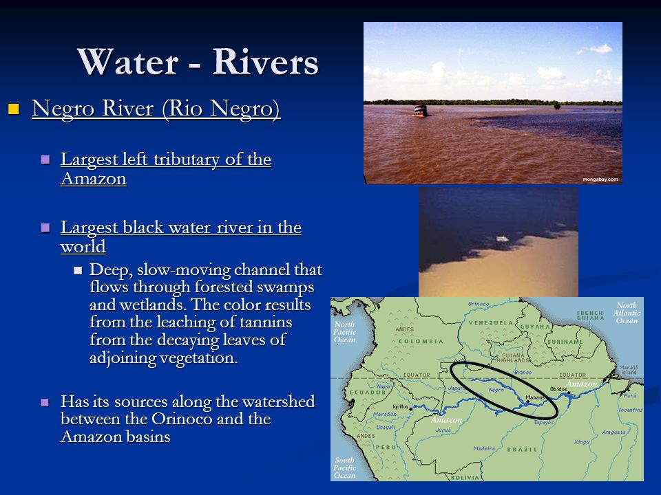 Water - Rivers Negro River (Rio Negro)