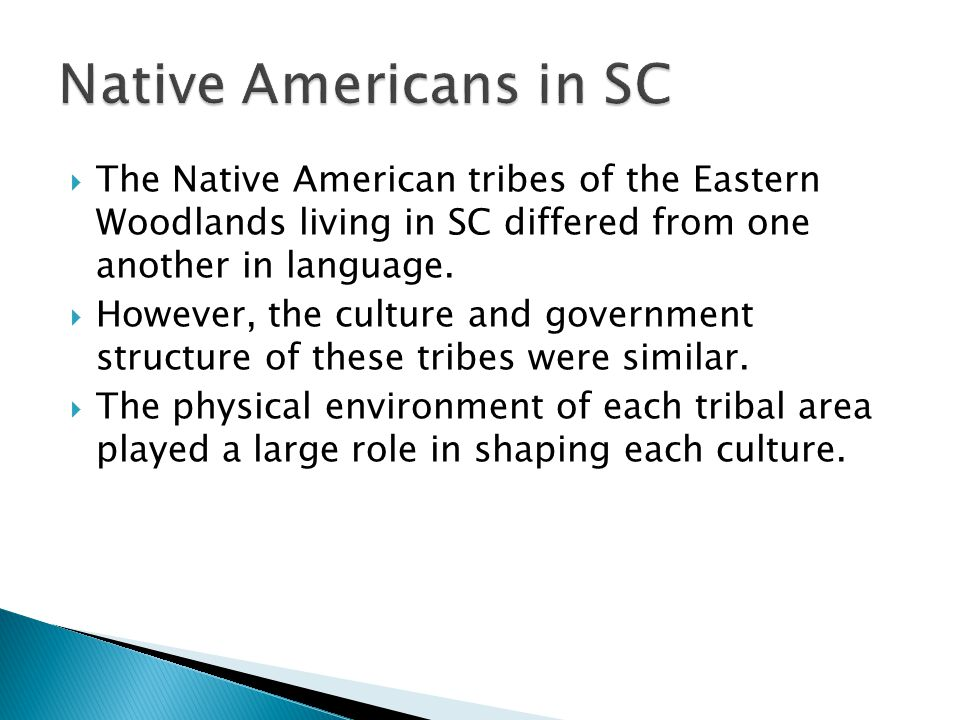Native Americans in SC The Native American tribes of the Eastern Woodlands living in SC differed from one another in language.