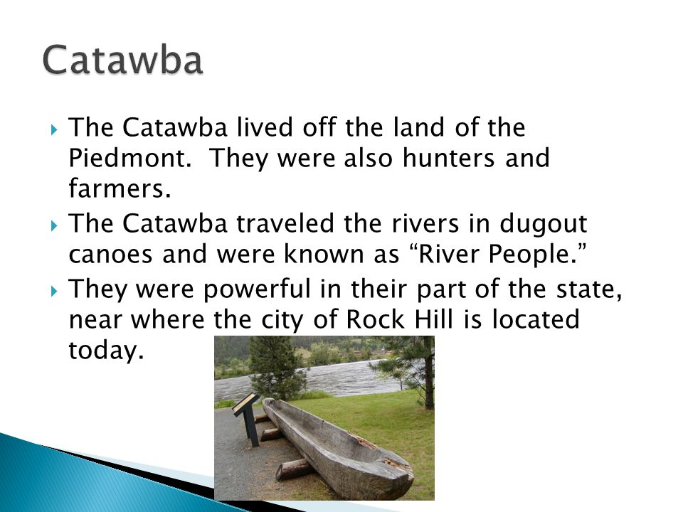 Catawba The Catawba lived off the land of the Piedmont. They were also hunters and farmers.
