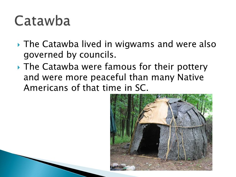 Catawba The Catawba lived in wigwams and were also governed by councils.