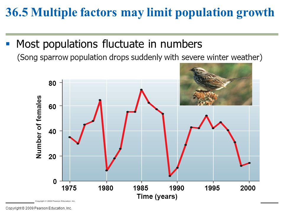 36.5 Multiple factors may limit population growth
