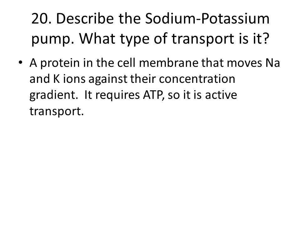 20. Describe the Sodium-Potassium pump. What type of transport is it