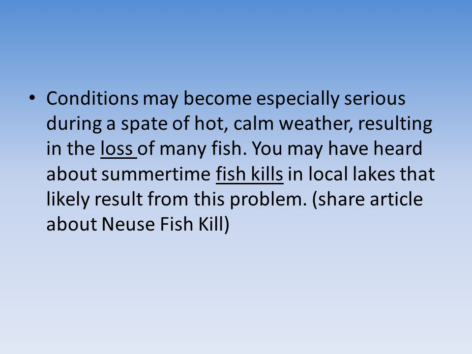 Conditions may become especially serious during a spate of hot, calm weather, resulting in the loss of many fish.