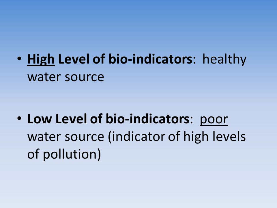 High Level of bio-indicators: healthy water source