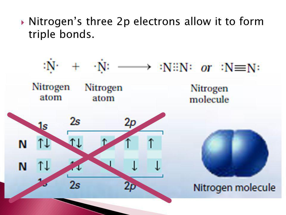 Nitrogen's three 2p electrons allow it to form triple bonds.