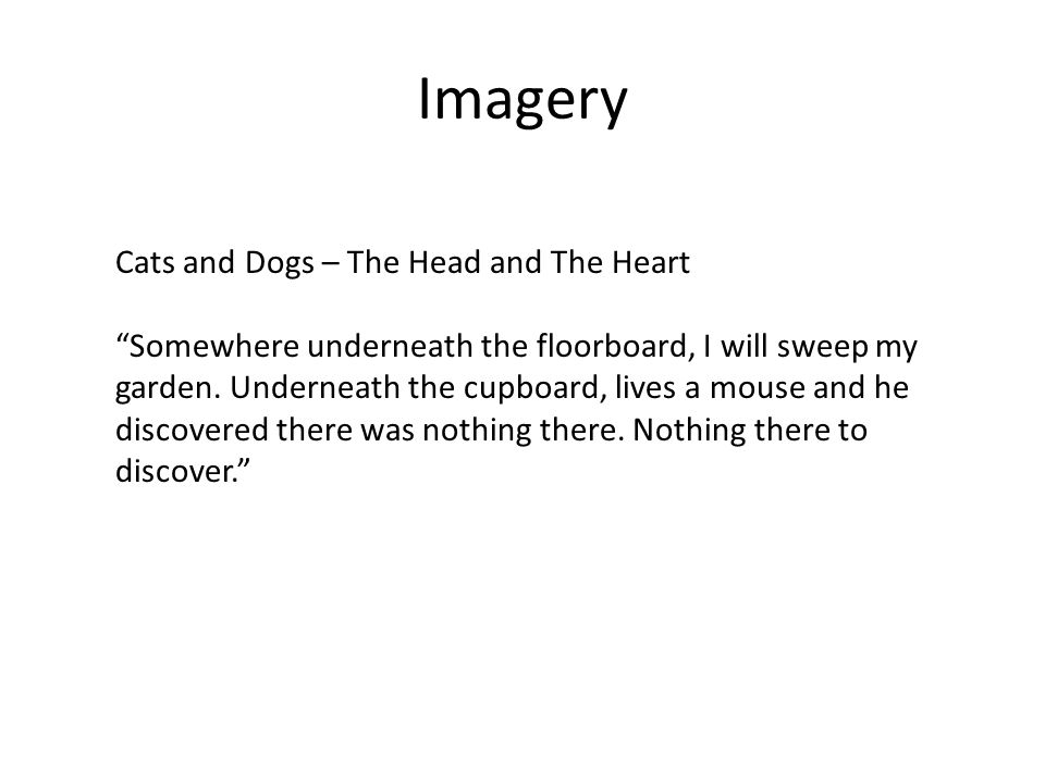 Imagery Cats and Dogs – The Head and The Heart