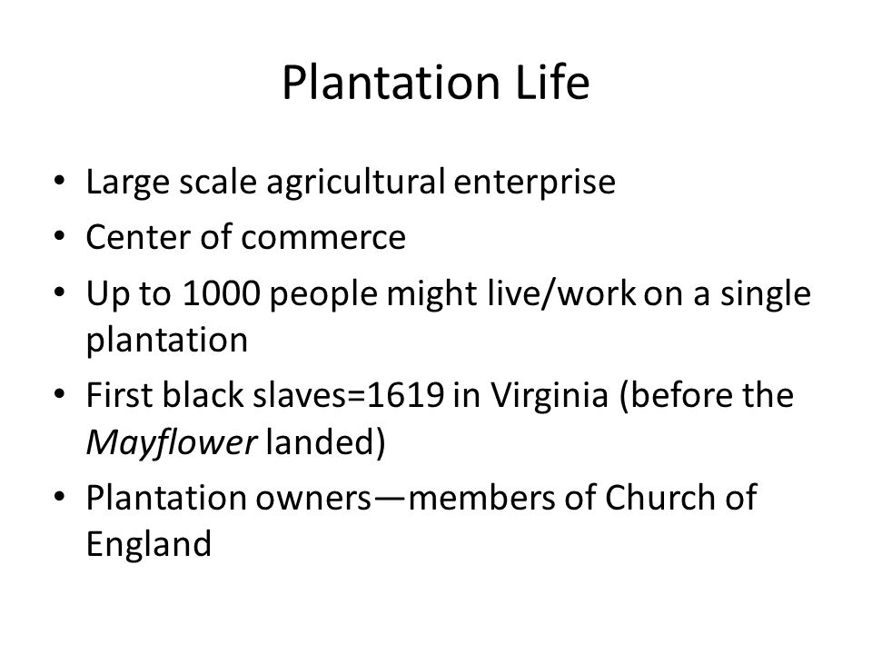 Plantation Life Large scale agricultural enterprise Center of commerce