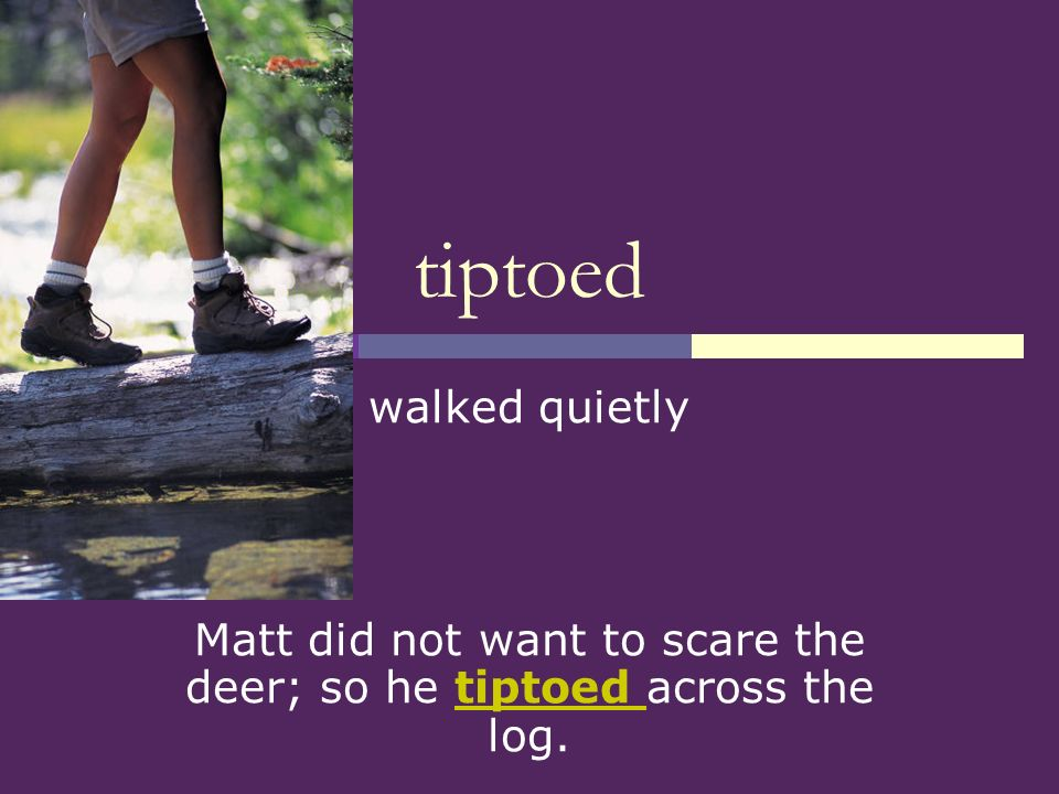 Matt did not want to scare the deer; so he tiptoed across the log.