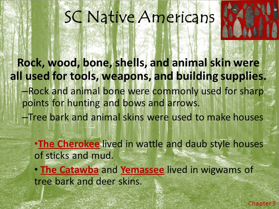 SC Native Americans Rock, wood, bone, shells, and animal skin were all used for tools, weapons, and building supplies.
