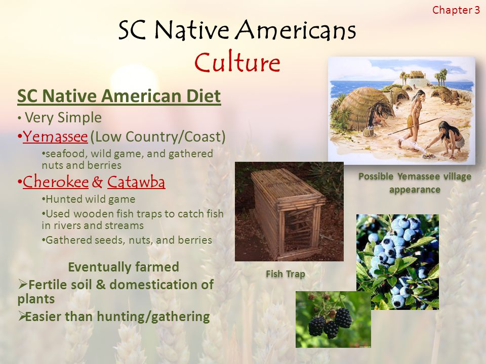 SC Native Americans Culture Possible Yemassee village appearance