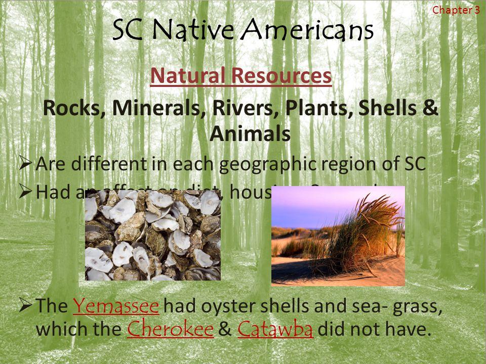 Rocks, Minerals, Rivers, Plants, Shells & Animals