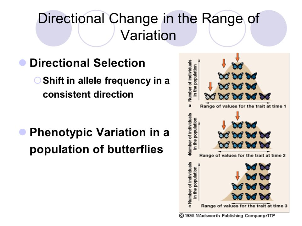 Directional Change in the Range of Variation