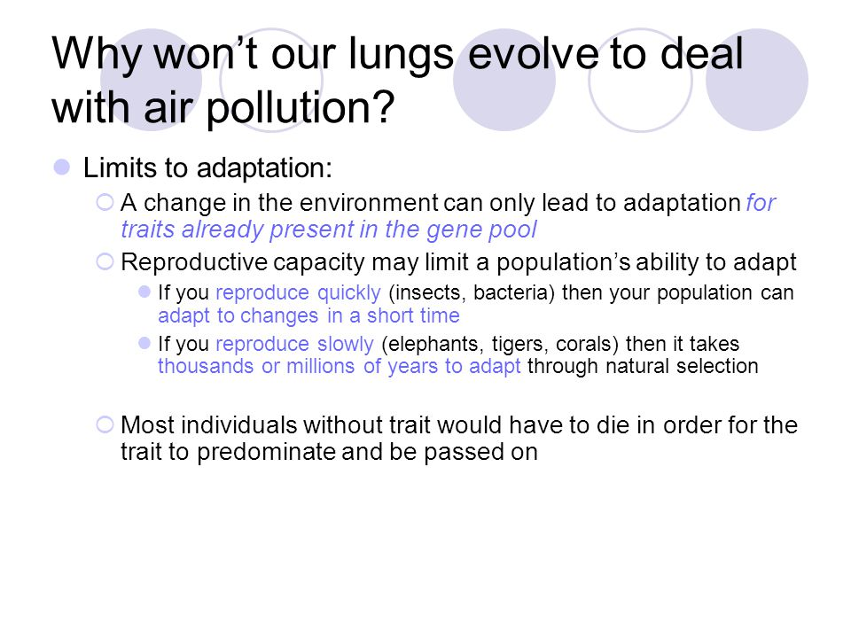 Why won't our lungs evolve to deal with air pollution
