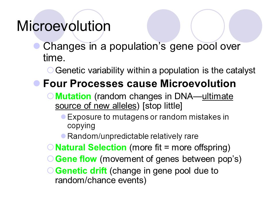 Microevolution Changes in a population's gene pool over time.