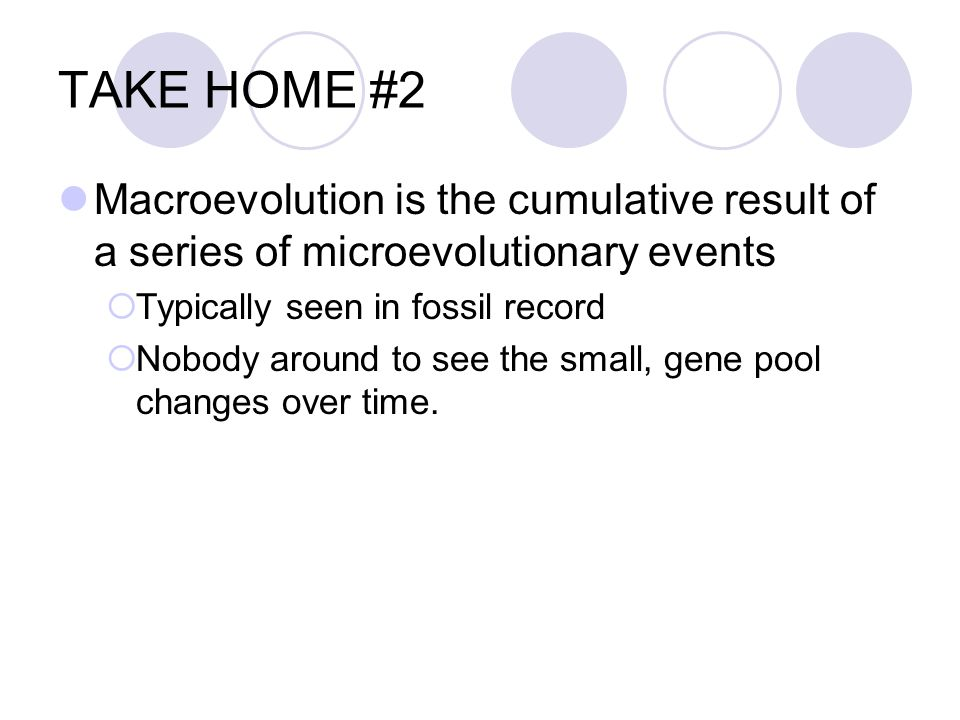 TAKE HOME #2 Macroevolution is the cumulative result of a series of microevolutionary events. Typically seen in fossil record.