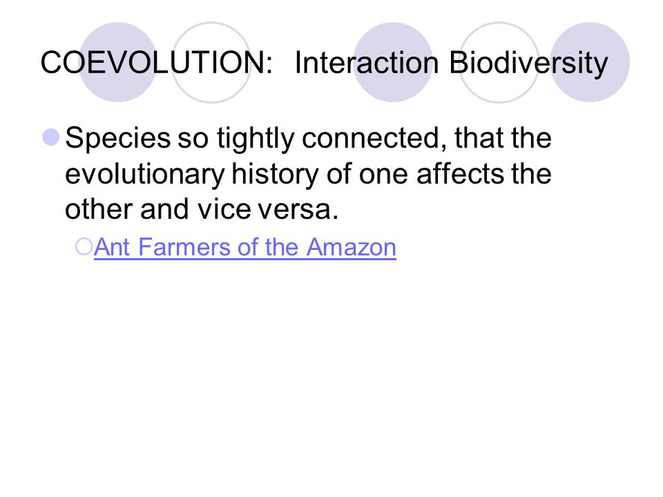 COEVOLUTION: Interaction Biodiversity