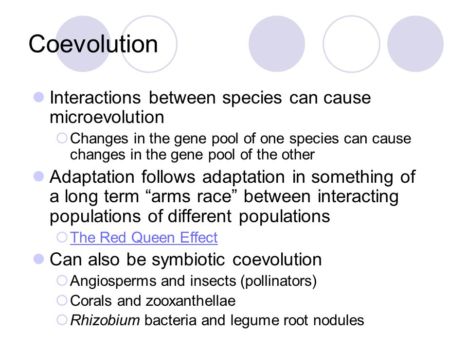 Coevolution Interactions between species can cause microevolution