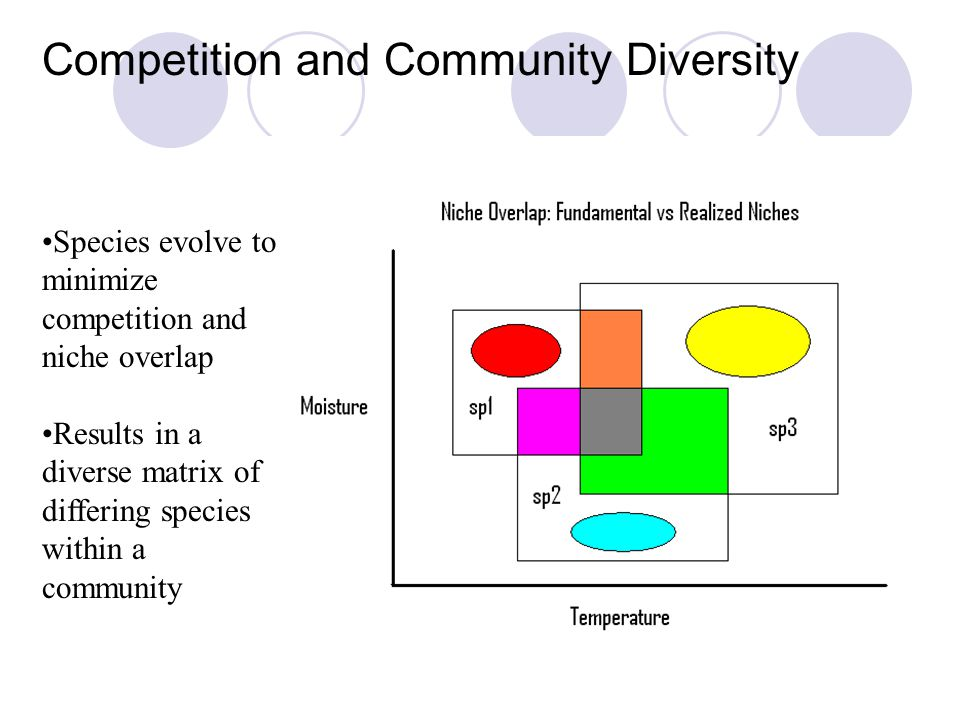 Competition and Community Diversity