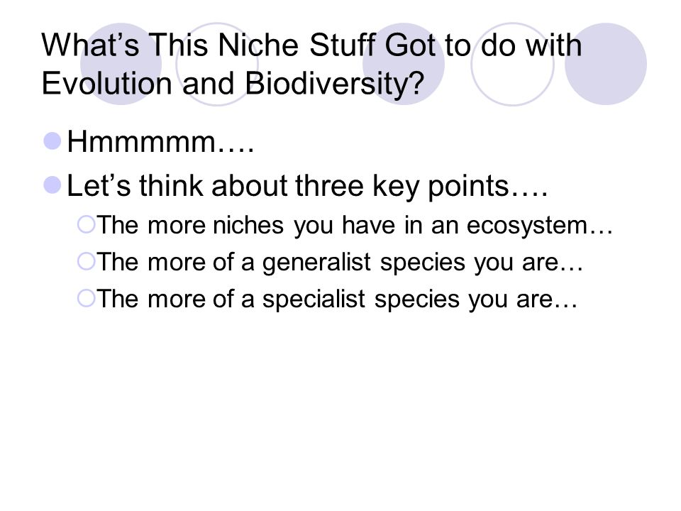 What's This Niche Stuff Got to do with Evolution and Biodiversity