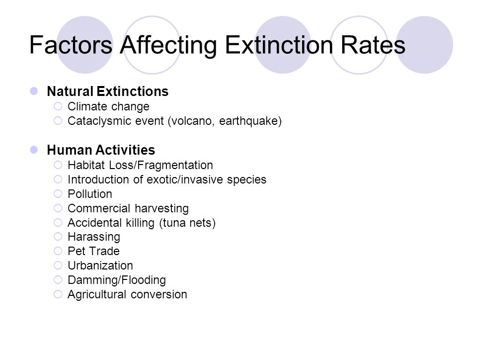 Factors Affecting Extinction Rates