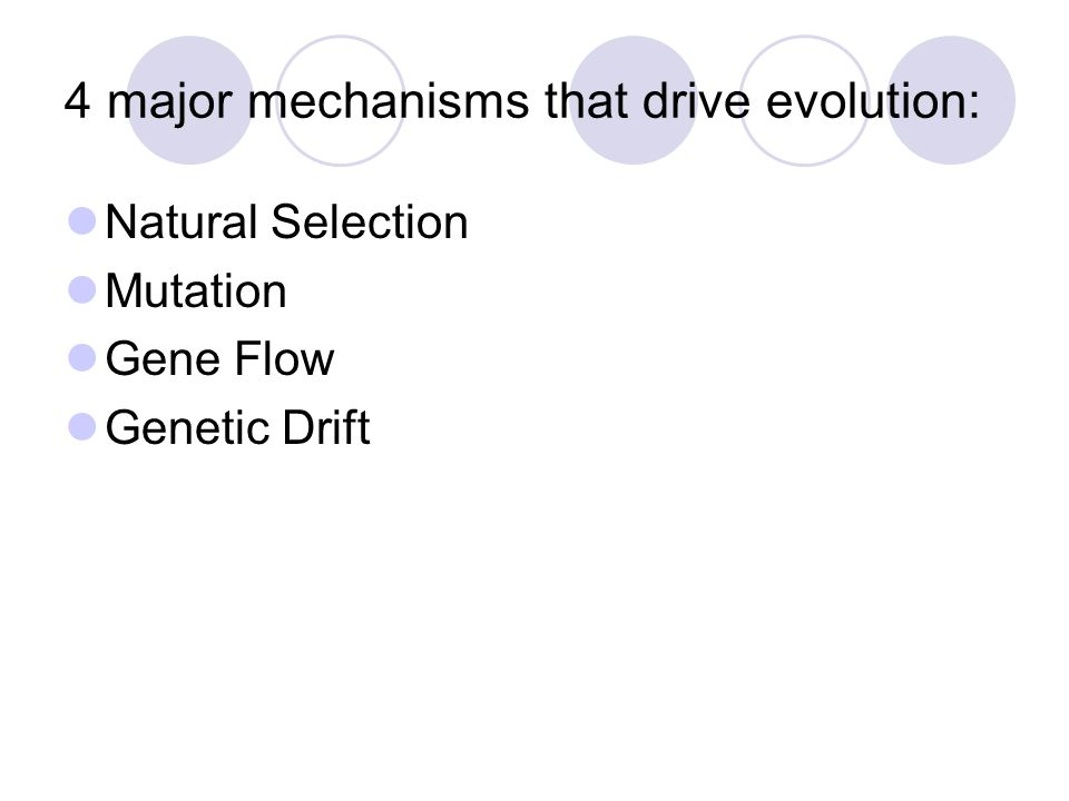 4 major mechanisms that drive evolution: