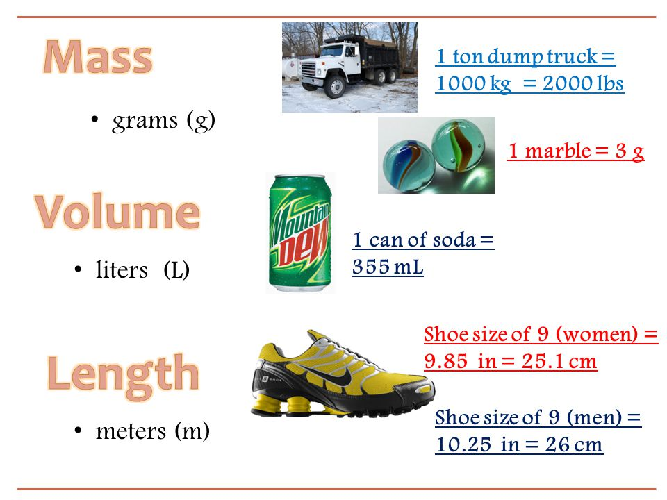 Mass Volume Length grams (g) liters (L) meters (m)