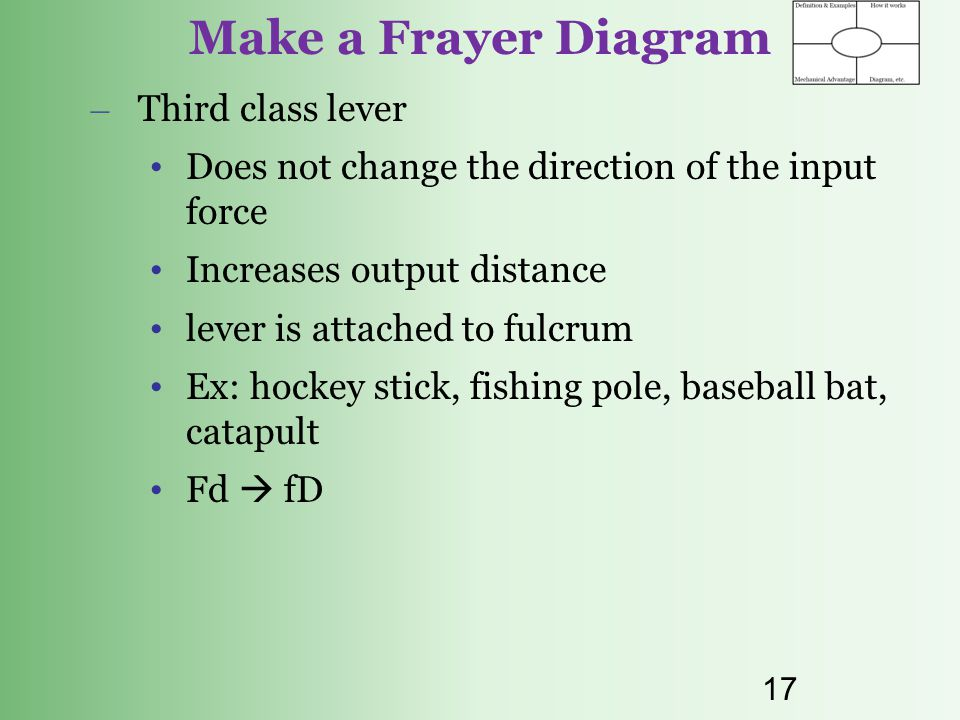 Make a Frayer Diagram Third class lever