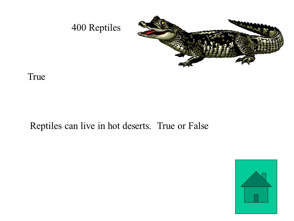400 Reptiles True Reptiles can live in hot deserts. True or False