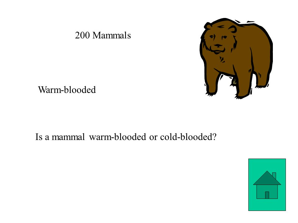 200 Mammals Warm-blooded Is a mammal warm-blooded or cold-blooded